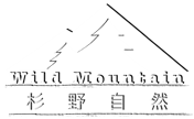WM Logo Watermark - Low-Res.png